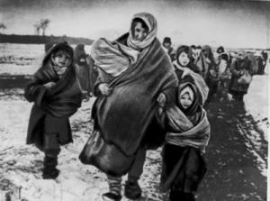 war refugees
